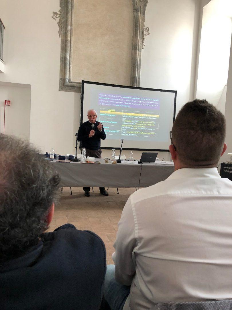 Mauro Matteini (Università di Firenze) - Soluzioni inorganiche; trattamenti nella pratica nei cantieri (fosfato e ossalto) (3)